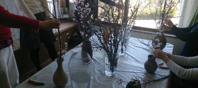 3月のフラワーセラピー テーマ 桜花を生ける