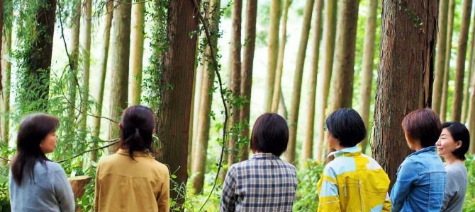 大地とつながる 森のフラワーセラピー