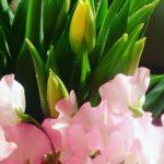 季節の花あそび~新春アレンジ~