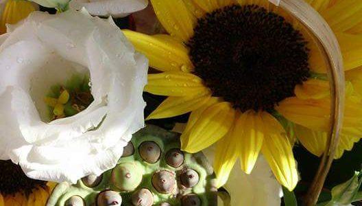 第14回 食とお花コラボレッスンは、9/1(金)お申し込み受付です。