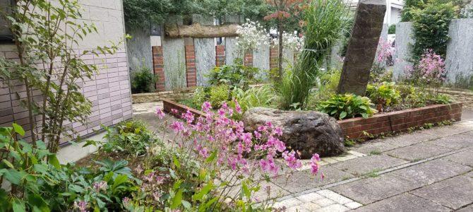 ガーデンのお仕事で感じた「美しさ」の意味