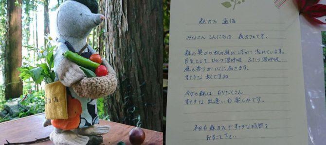 ありがとう~9月の森カフェ~