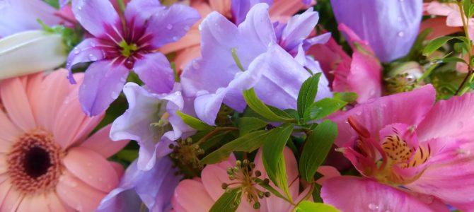 花と生きる日々①