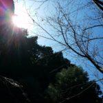 3/26花あそび「大地に寝ころぼう」